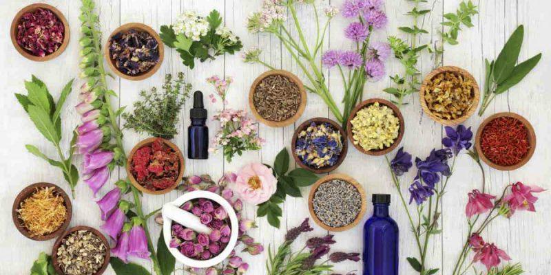 Greek Herbs